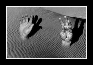quicksand 3